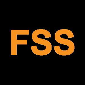 www.fashionstylestock.com